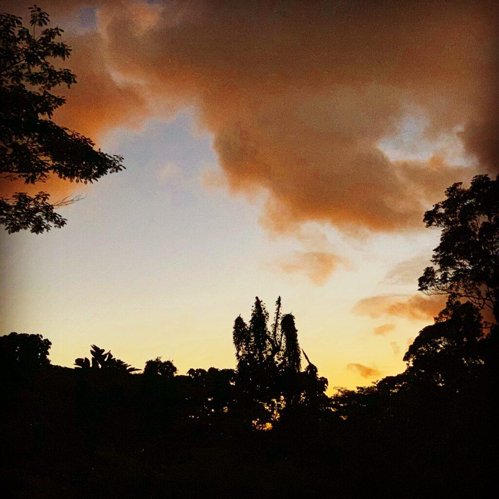 2/8/19: Morning Meditative Moments (again)