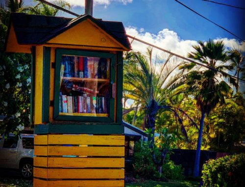 7/13/19: Neighborhood Book Box (a Haiku)